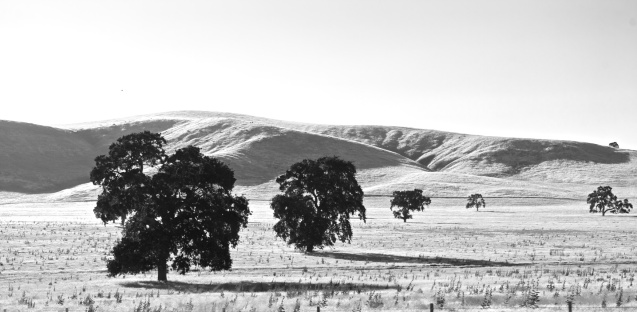 Joe Sterne Photography, California, roadtrip, c2c12, black and white
